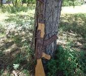 Мастер-класс - Деревянный автомат АК-74