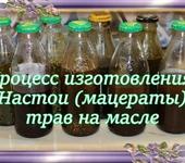 Мастер-класс - Настои (мацераты) трав на масле