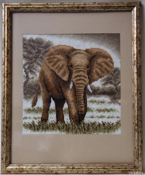 Семь слоников вышивка отзывы 56