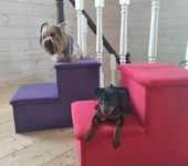 Аксессуары для собак - лесенка-лежанка для животных