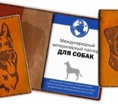 Обложки для паспорта - Обложки для документов