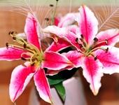 Цветы - Букет из лилий ручной работы