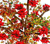 Оригинальные подарки - Осенняя рябинка.