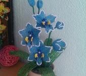 Бисер и бисероплетение - орхидея