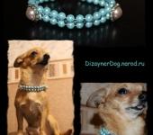 Аксессуары для собак - Эксклюзивные аксессуары для маленьких собак
