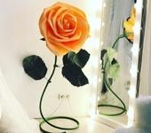 Элементы интерьера - Роза персикового цвета.