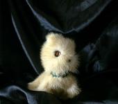 Сказочные персонажи - Ис, маленький северный лис