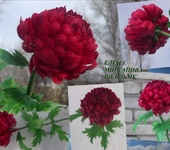 "Флористика - Видео мастер класс""Хризантема из зефирного фоамирана"""