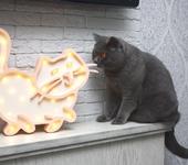 """Светильники, люстры - Ночник """"Жирный кот"""""""