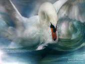 """Вышитые картины - Авторская схема вышивки """"Лебедь"""""""
