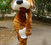 Карнавальные костюмы - я собака
