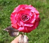 Оригинальные подарки - Кованая бархатно-розовая роза